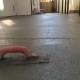 Concrete finishing tool on wet concrete